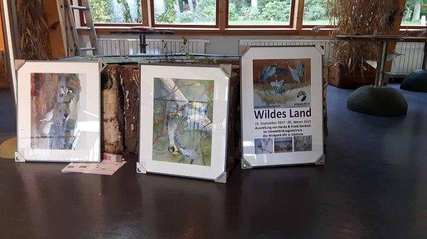 Schnappschüsse vom Hängen unserer Aquarelle im Wildpark MV (c) FRank Koebsch (2)