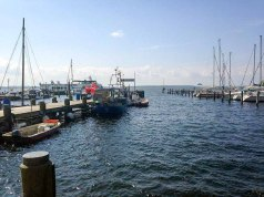 Blick auf den Hafen von Rerik (c) Kirsten Paulsen