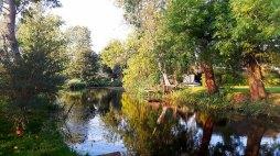 Herbst in Middelhagen (c) FRank Koebsch (2)