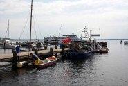 Schnnappschüsse aus dem Hafen von Rerik (c) FRank Koebsch (2)