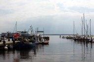 Schnnappschüsse aus dem Hafen von Rerik (c) FRank Koebsch (3)
