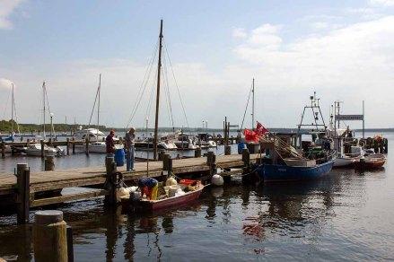 Schnnappschüsse aus dem Hafen von Rerik (c) FRank Koebsch (4)