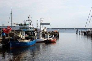 Schnnappschüsse aus dem Hafen von Rerik (c) FRank Koebsch (5)