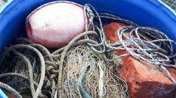 Schnnappschüsse aus dem Hafen von Rerik (c) FRank Koebsch (8)