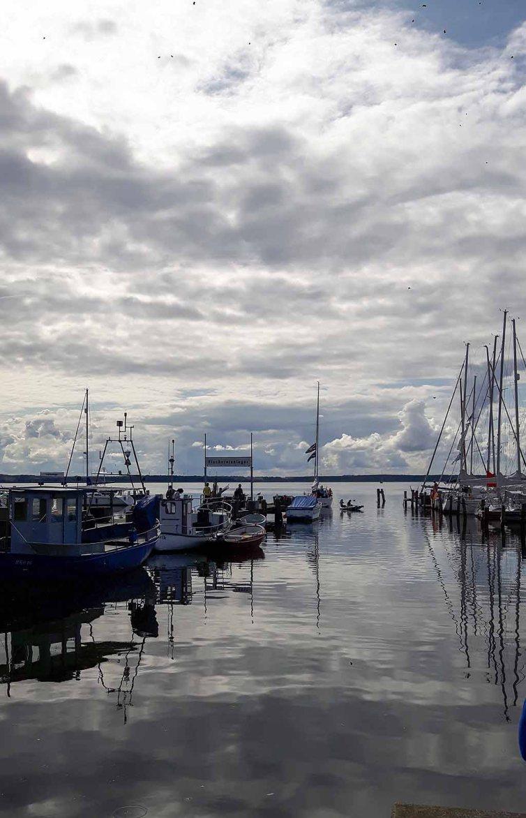 Wunderbares Ensemble im Hafen von Rerik (c) Frank Koebsch (15)