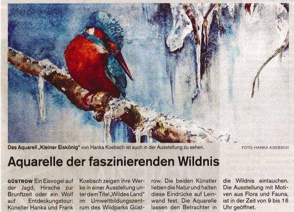Aquarelle der faszinierenden Wildnis - Die Schweriner Volkszeitung berichtet über unsere Ausstellung Wildes Land im Wildpark MV 2017 11 16