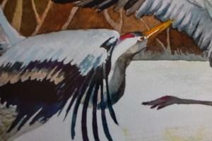 Detail aus dem Posterdruck des Kranich Aquarells - Hochzeit in Weiß (c) Frank Koebsch (1)