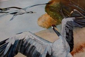 Detail aus dem Posterdruck des Kranich Aquarells - Hochzeit in Weiß (c) Frank Koebsch (2)
