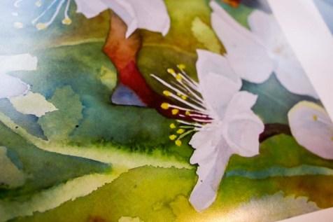 Details aus einem Postserdruck des Aquarell - Wildwuchs in der Obstblüte (c) Frank Koebsch (1)