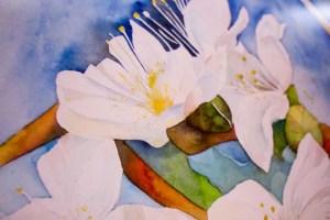 Details aus einem Postserdruck des Aquarell - Wildwuchs in der Obstblüte (c) Frank Koebsch (2)