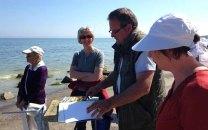 FRank Koebsch erklärt wie Steine und Buhnen im Aquarell gemalt werden können (c) kirsten Paulsen (2)