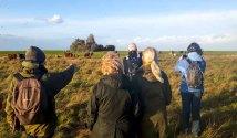 Herr Schwarz erklärt uns die Highliths der Natur auf dem Großen Schwerin (c) Frank Koebsch (5)
