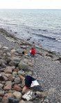 Malen am Strand von Heiligendamm (c) Frank Koebsch (2)