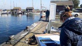 Malen im Hafen von Gager (c) Frank Koebsch (5)