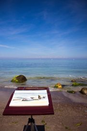 Malreise nach Kühlungsborn - Direkt an der Ostsee entstehen Aquarelle mit Steinen und Wellen (c) FRank Koebsch (3)