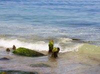 Schnappschuss von einer kleinen Welle (c) FRank Koebsch