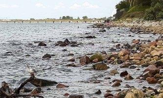 Schnappschusss beim Malen am Strand von Heiligendamm (c) FRank Koebsch (1)