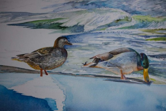 Schritt 22 - Aus einer Ente werden zwei und Fetail für Detail füllt sich das Aquarell - Partyam Strand (c) Frank Koebsch