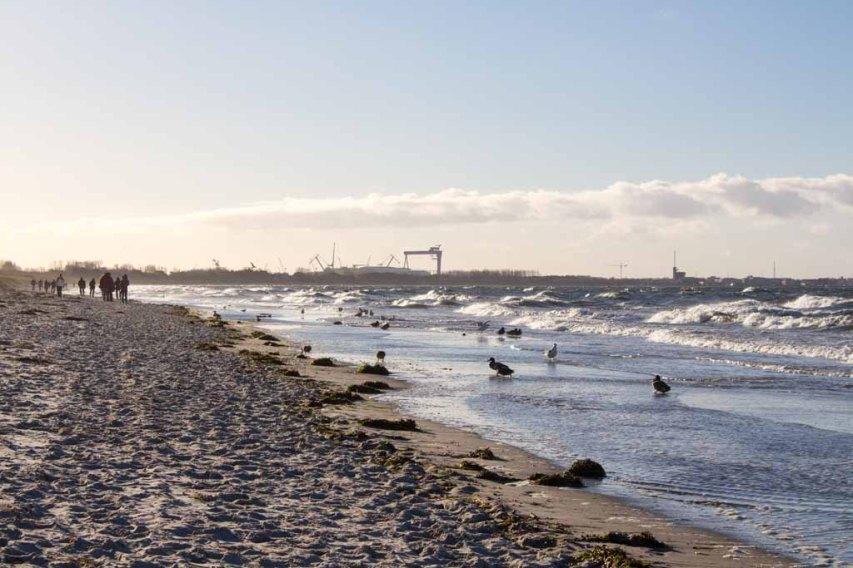 Stürmischer Novembertag an der Ostsee (c) Frank Koebsch