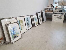 Vorbereitungen für unsere Ausstellung im Heimatmuseum Graal Müritz (c) FRaank Koebsch (2)