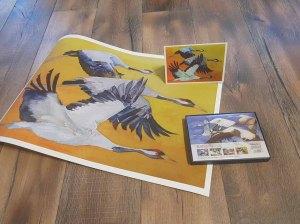 Das Kranich Aquarell - Vögel des Glücks - als Druck auf Hahnemühlepapier Albrecht Dürer, als Kunstkarte (c) Frank Koebsch (2)