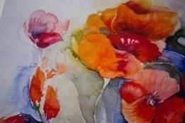 Details aus dem Druck des Mohnaquarells - Farben des Sommers - auf Hahnemühlepapier Albrecht Dürer (c) Frank Koebsch
