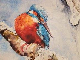 Details aus derm Druck auf Leinwand von dem Eisvogel Aquarell - Kleiner Eiskönig (c) FRank Koebsch