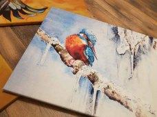 Druck auf Leinwand von dem Eisvogel Aquarell - Kleiner Eiskönig (c) FRank Koebsch