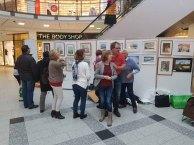 Malschüler aus den Aquarellkursen der VHS Rostock hängen ihre Bilder im Rostocker Hof (c) FRank Koebsch (8)