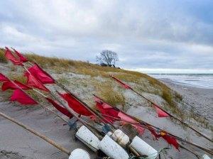 Rote Fähnchen der Küstenfischer am Strand von Ahrenshoop (c) Frank Koebsch