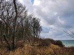 Winter im Gespensterwald Nienhagen (c) Frank Koebsch (1)