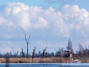 Aussichtsturm auf dem Naturlehrpfad Menzliner Deichpfade (c) Frank Koebsch (6)