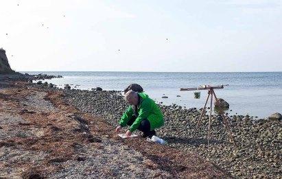 Malen am Strand vom Reddevitzer Höft (c) FRank Koebsch (10)