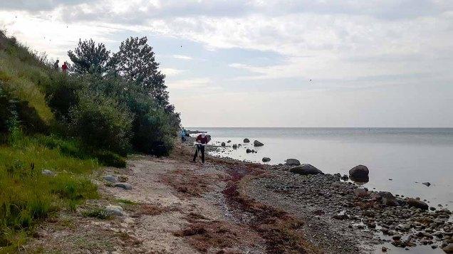 Malen am Strand vom Reddevitzer Höft (c) FRank Koebsch (3)