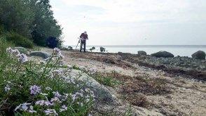 Malen am Strand vom Reddevitzer Höft (c) FRank Koebsch (4)