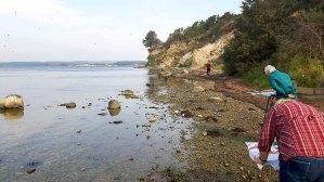 Malen am Strand vom Reddevitzer Höft (c) FRank Koebsch (7)