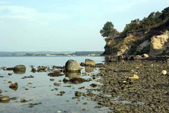 Steilküste des Reddevitzer Höfts (c) FRank Koebsch (2)