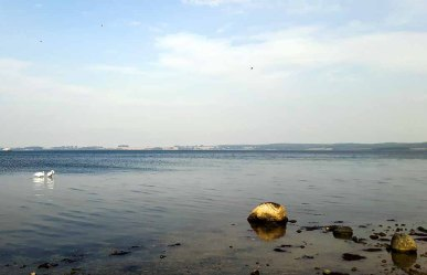 Strand an der Steilküste des Reddevitzer Höfts (c) FRank Koebsch