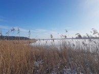 Winter auf dem Naturlehrpfad Menzliner Deichpfade (c) Frank Koebsch (1)