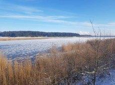 Winter auf dem Naturlehrpfad Menzliner Deichpfade (c) Frank Koebsch (3)