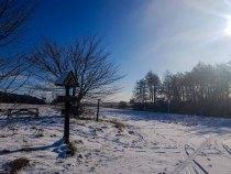 Winter auf dem Naturlehrpfad Menzliner Deichpfade (c) Frank Koebsch