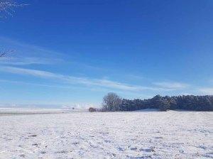 Winterlandschaft an der Peene bei Menzlin (c) FRank Koebsch (1)