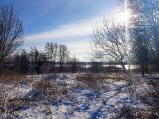 Winterlandschaft an der Peene bei Menzlin (c) FRank Koebsch (4)