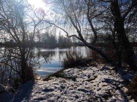 Winterlandschaft an der Peene bei Menzlin (c) FRank Koebsch (5)