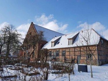 ilck über den Abteigarten auf das Doberaner Kornhaus (c) FRank Koebsch (1)
