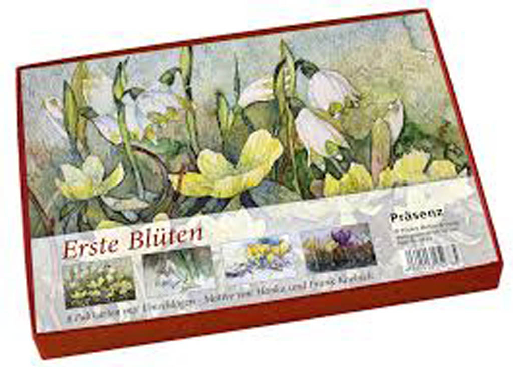 Kunstkarten-Box - Erste Blüten - mit Motiven von unseren Aquarellen mit Frühlingsblühern