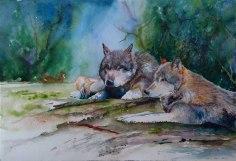 Aus dem Schatten (c) Aquarell von Hanka Koebsch