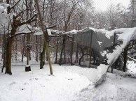 Wildpark-MV - eingestürzte kleine Eulen-Voliere