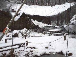 Wildpark-MV - eingestürzte Sittich-Voliere (2)