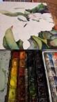 Apfelblüten entstehen auf Hahnemühle Aquarellpapier Leonardo matt (c) FRank Koebsch (1)